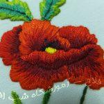گلدوزی یک گل شقایق