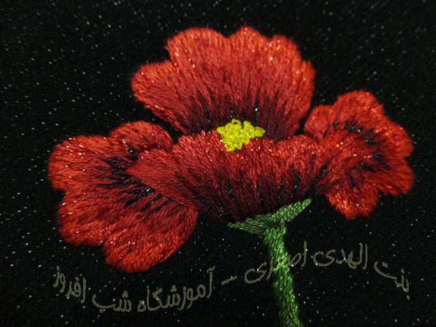 شقایق و نخ لمه- بنت الهدی اصغری